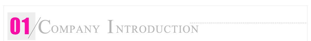 unice company introduction